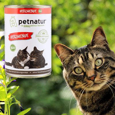 Hochwertige und natürliche Nahrung für Ihre Katze